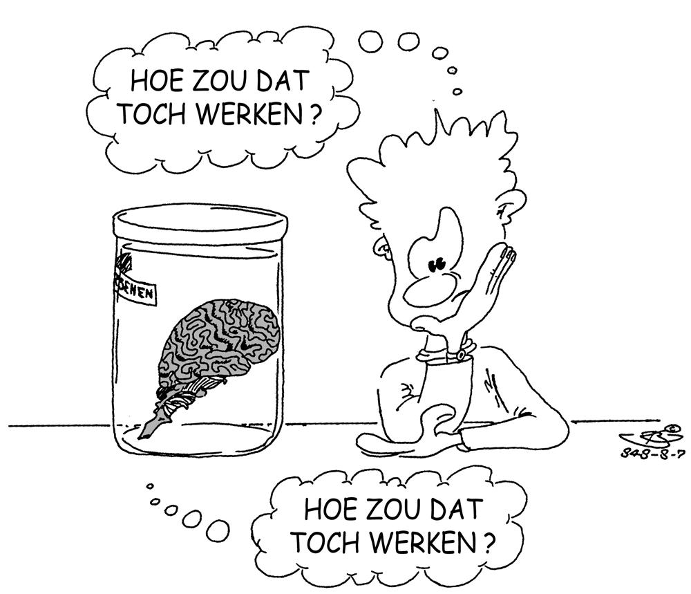 Kleurplaten Poppetjes Maken Over Mij Bart Kranenburg Cartoons Illustraties Strips